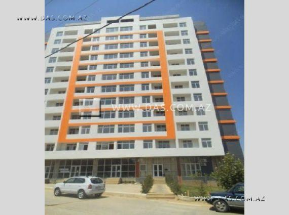 New Building / Sales - 11463